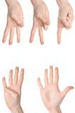 Conteggio delle mani della donna Immagine Stock