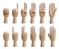 Conteggio delle mani di legno Immagine Stock
