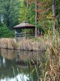 Contemplación en la orilla del lago fotografía de archivo
