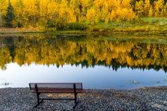 Contemplating The Colors Of A Colorado Autumn Stock Photos