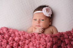 Contemplating Newborn Baby Girl royalty free stock photography