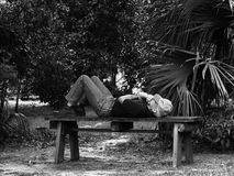 Contemplation. A man taking a nap on an old bench in the woods stock photos