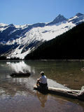 Contemplation. This picture was taken of a woman sitting on log at Avalanche Lake in Glacier National Park Royalty Free Stock Image