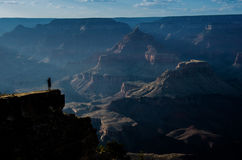 Contemplation. Contemplating the depths of the Grand Canyon from Mather Point National Park Royalty Free Stock Images
