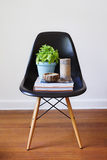 Contemporary black dining chair with plant books and candles Stock Image