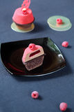 Contemporary Chocolate Raspberry Mousse Cake Stock Images