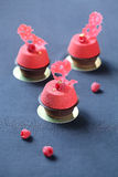 Contemporary Chocolate Raspberry Mousse Cakes Royalty Free Stock Photo
