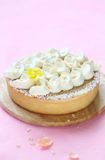 Contemporary Easter Coconut Tart Stock Image