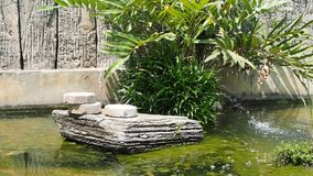 Contemporary garden water feature stock video footage