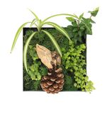 Contemporary wall planter Royalty Free Stock Image
