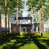 Contemporary house placed between pines. vector illustration