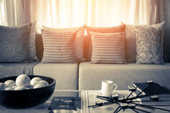 Contemporary interior of Living room with part of sofa in sunny. Day and white curtain interior background concept stock image