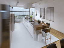 Contemporary kitchen style Royalty Free Stock Photography