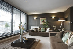 Contemporary luxury living room. With high spec furnishing and decoration