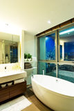 Contemporary style bathroom Royalty Free Stock Photo