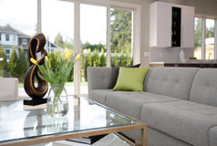 Contemporary style living room Royalty Free Stock Photos