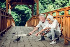 Contended couple feeding up the pigeons on the bridge stock photography