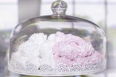Conteneur pour stocker le conteneur de gâteaux avec les guimauves blanches et roses image stock