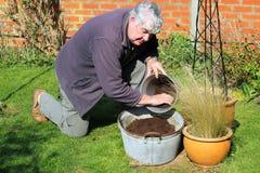 Conteneur remplissant de vieil homme avec le compost. Image libre de droits