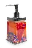 Conteneurs de savon liquide Photos stock