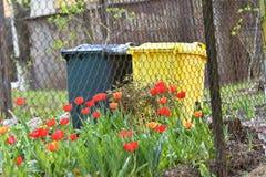 Conteneurs pour la collecte des déchets distincte près de la forêt le concept du respect pour la nature et la réutilisation images stock