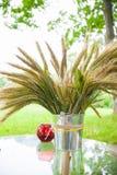 Contenitore con il germoglio verde Fotografia Stock