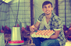Contenitore della tenuta dell'agricoltore dell'uomo con le uova fresche Immagini Stock Libere da Diritti