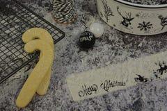 Contenitore di biscotto di Natale con la renna ed il fiocco di neve fotografia stock libera da diritti