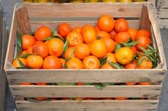 Contenitore di frutta in pieno delle clementine fresche sviluppate con il techni biologico Fotografie Stock