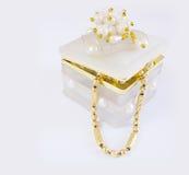 Contenitore di gioielli Fotografie Stock
