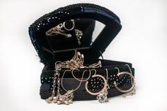 Contenitore di gioielli di legno imballato con gli accessori Immagine Stock