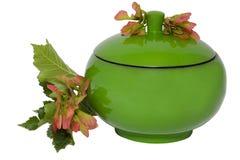 Contenitore di monili verde Fotografia Stock
