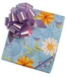 Contenitore di regalo - 2 Fotografia Stock
