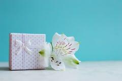 Contenitore di regalo bianco con il singolo fiore di alstroemeria sul backgroun della menta Fotografia Stock