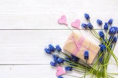 Contenitore di regalo con i fiori blu del muscari ed i cuori decorativi su briciolo Immagine Stock