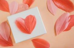 Contenitore di regalo con il heartsn luminoso della piuma fotografia stock