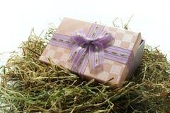 Contenitore di regalo con l'arco nel nido di pasqua Immagini Stock Libere da Diritti