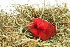 Contenitore di regalo con l'arco nel nido di pasqua Fotografie Stock Libere da Diritti