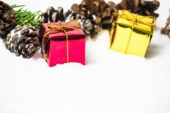 Contenitore di regalo con le foglie ed i coni del pino sul fondo della neve Fotografia Stock Libera da Diritti