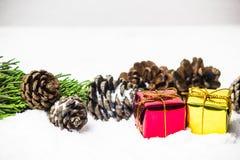 Contenitore di regalo con le foglie ed i coni del pino sul fondo della neve Fotografia Stock