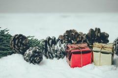 Contenitore di regalo con le foglie ed i coni del pino sul fondo della neve Immagini Stock Libere da Diritti