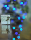 Contenitore di regalo d'argento con le luci Immagini Stock Libere da Diritti