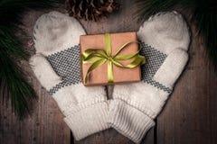 Contenitore di regalo di Christmass e guanti Fotografie Stock