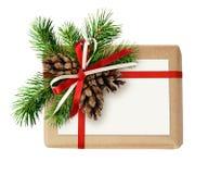 Contenitore di regalo di Natale con l'arco del nastro, il ramoscello dell'abete, i coni e la corrente alternata Fotografia Stock Libera da Diritti