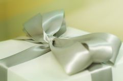 Contenitore di regalo elegante Fotografia Stock