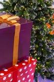 Contenitore di regalo presente con il nastro e l'albero di Natale Immagini Stock Libere da Diritti