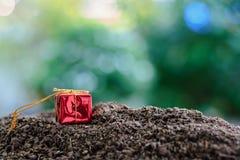 Contenitore di regalo rosso su suolo contro fondo verde naturale vago fotografia stock libera da diritti
