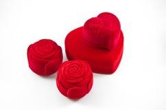 Contenitore di rosa di seta rossa del velluto per l'aggancio Fotografia Stock