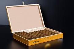 Corone del contenitore di sigaro Fotografie Stock Libere da Diritti