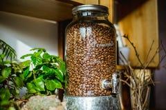 Contenitore di vetro dei chicchi di caffè Fotografia Stock